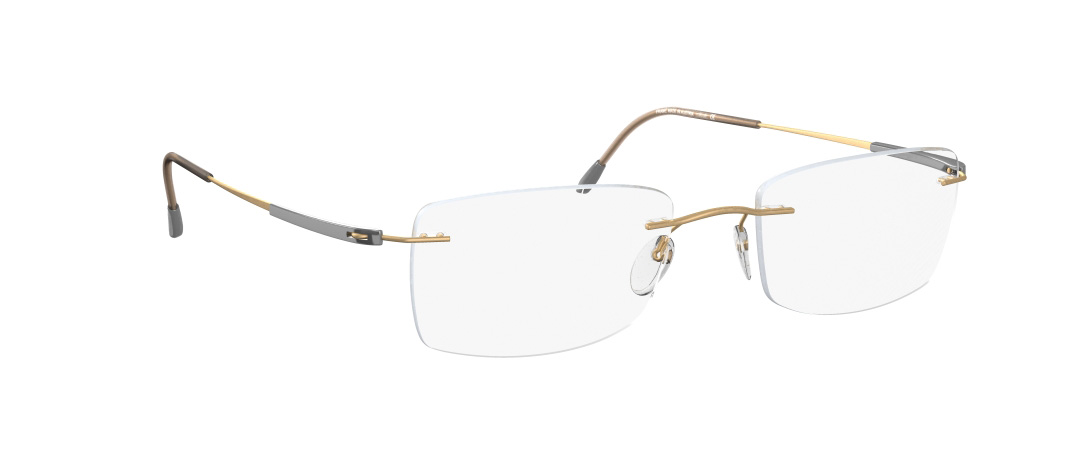 Silhouette Model: Titan Dynamics 5214, Colour Code: 6070, Frame Colour: Gold/Silver